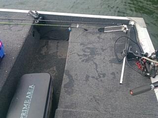 20150531 魚に引っ張られた