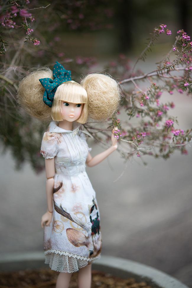 こぐま座 - 女王猫と鹿の姫