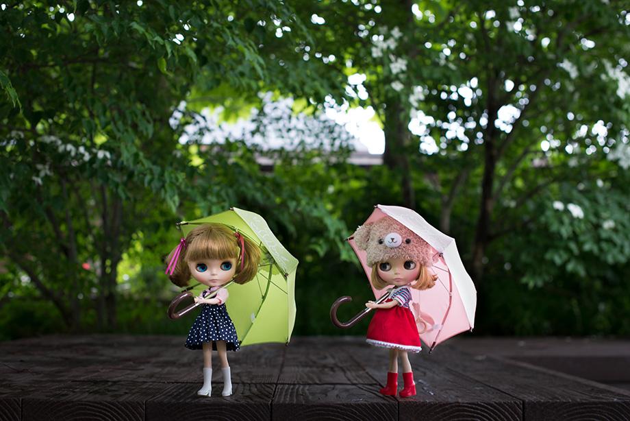 ブライス 傘