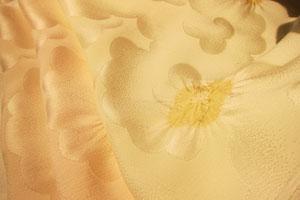 obiage2.jpg