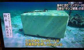 辺野古トンブロックサンゴ破壊
