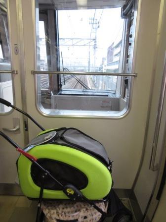 IMG_242415・8お盆京都