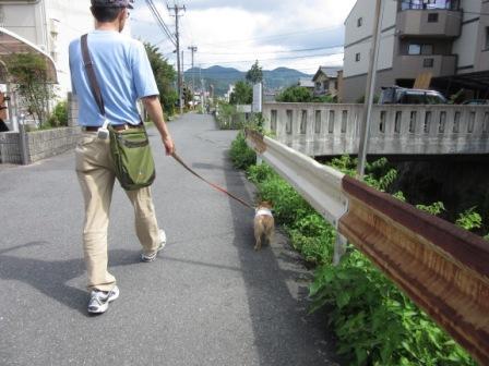 IMG_243415・8お盆京都