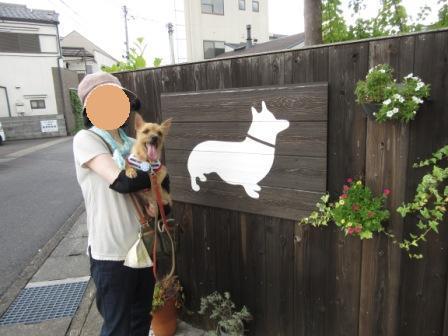 IMG_244115・8お盆京都