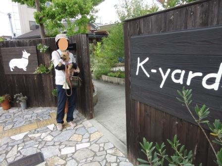 IMG_244315・8お盆京都