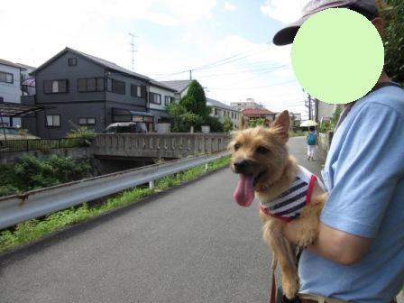 IMG_243815・8お盆京都