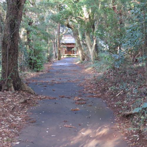 須崎神社ー3