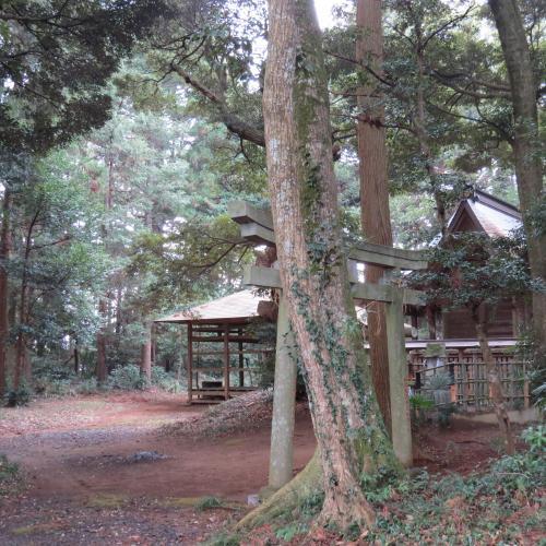 名古屋八幡ー22