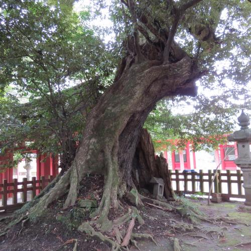 香取神宮ー32