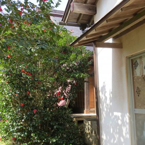 香取神宮ー102