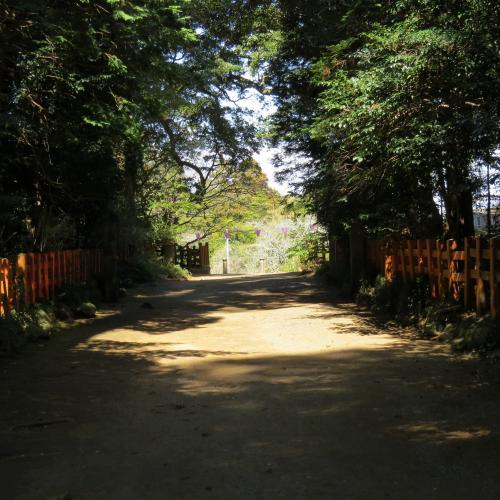 香取神宮ー156