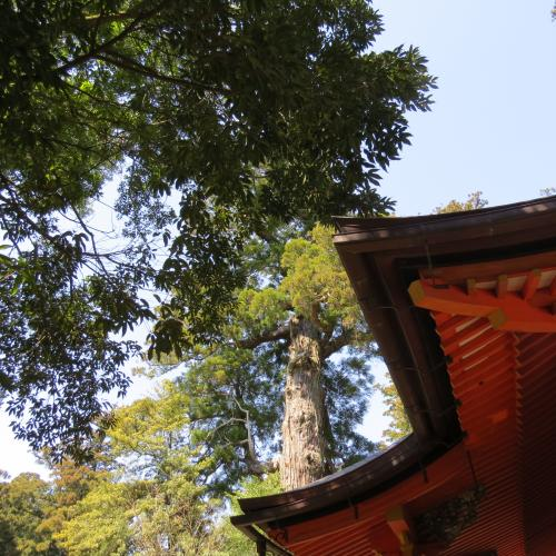 香取神宮ー165
