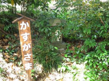 二宮神社ー22