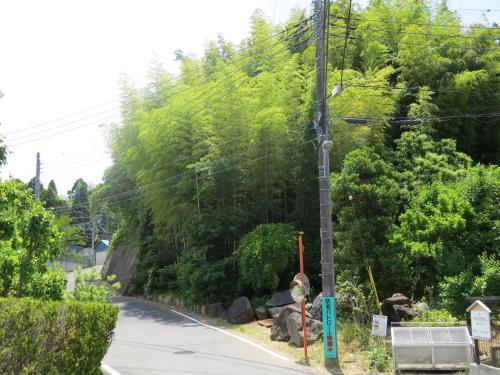 松崎街道ー24