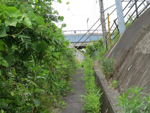 松崎街道ー122