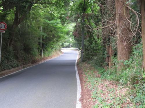 松崎街道ー156