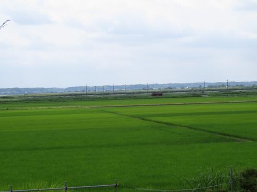 松崎街道ー218