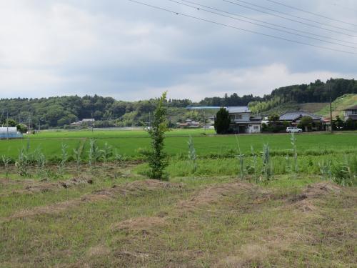 松崎街道ー220