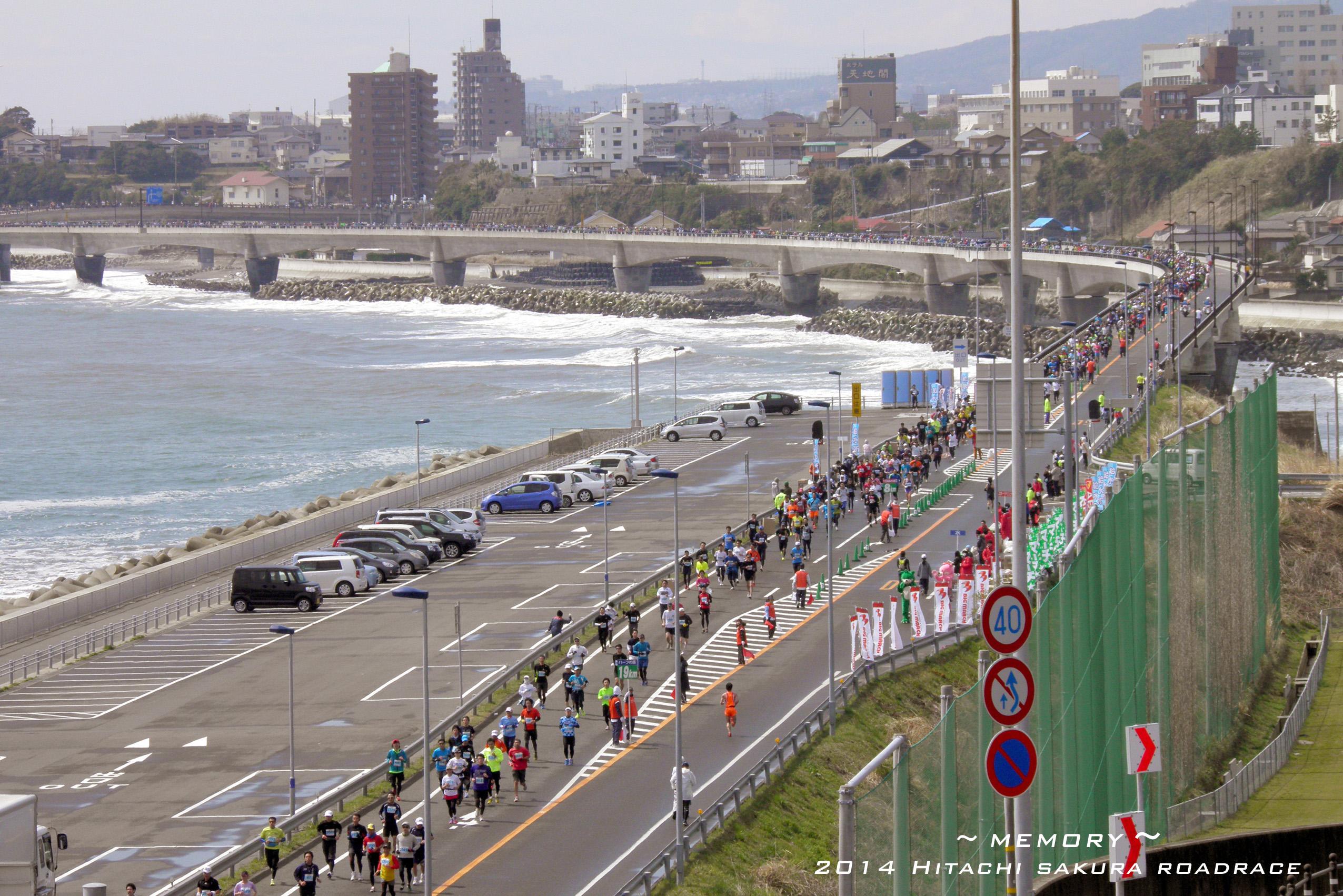 2014 SAKURA Roadrace