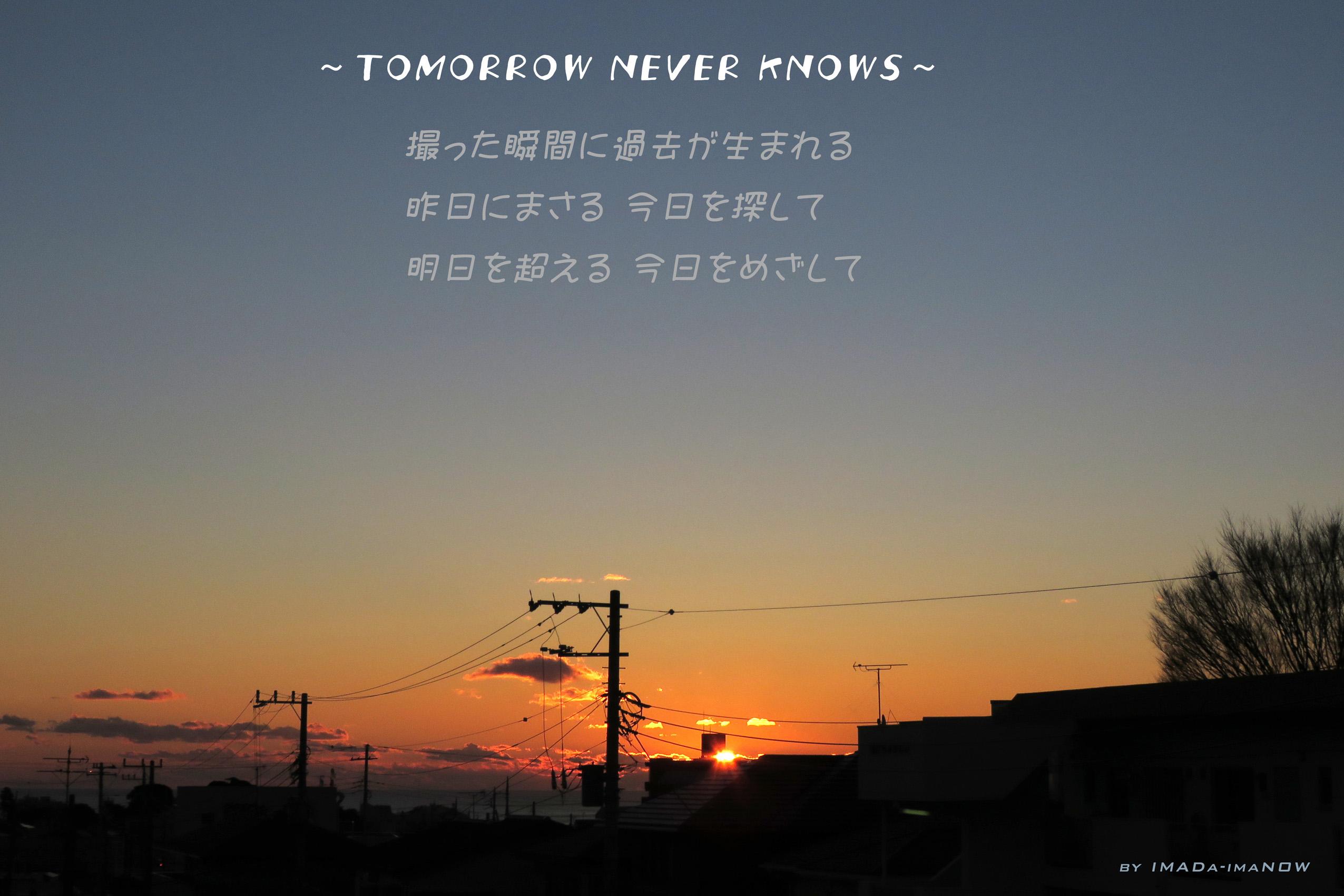 IMG_0439a.jpg