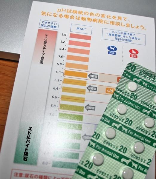 お薬と試験紙