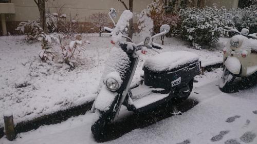 150102_雪_convert_20150102174329