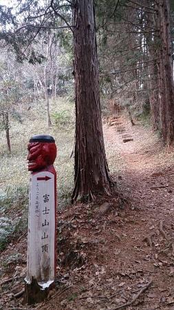 150314日和田山・物見山・富士山 (12)s