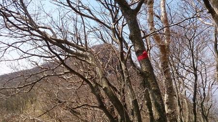 140425荒山・鍋割山 (5)s