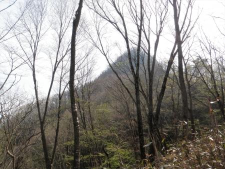 150429雨坊主山 (12)s