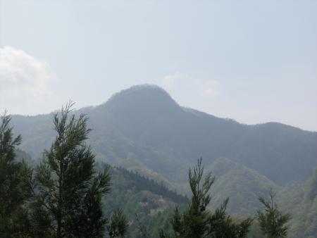150429雨坊主山 (32)s