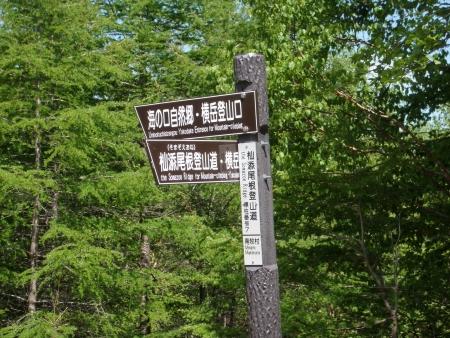 150530赤岳~三叉峰 (45)s