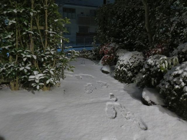 20150101 自宅 雪 (2)