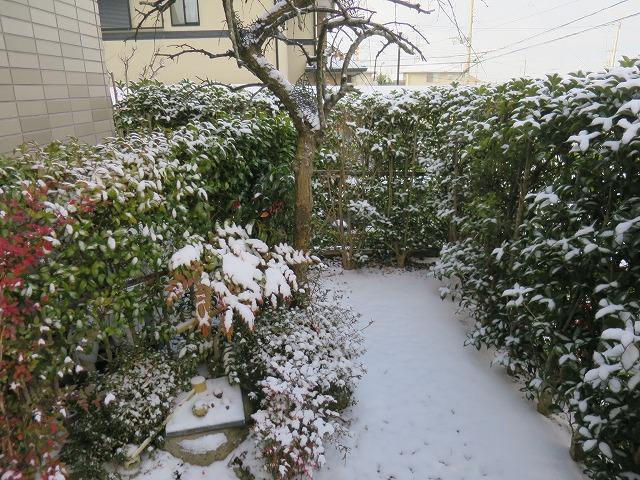 20150102 自宅 雪 (10)