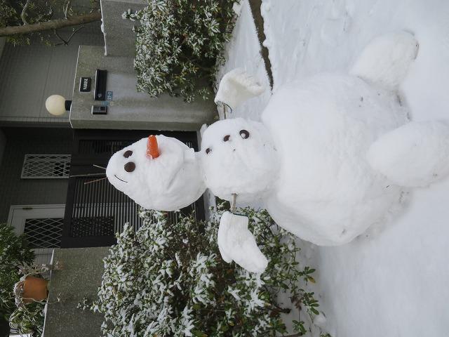 20150103 自宅 雪 (21)