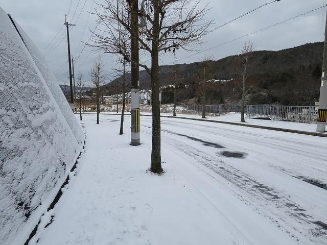 20150103 自宅 雪 (27)