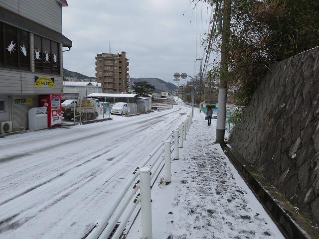20150103 自宅 雪 (47)