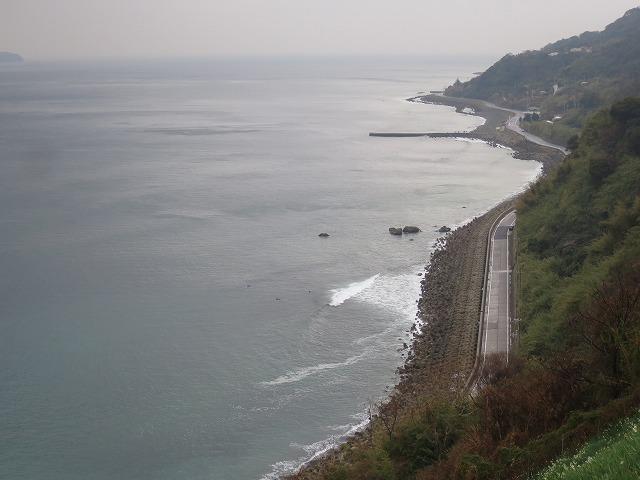 灘黒岩水仙郷 (14)