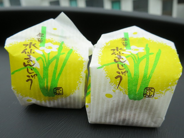 立川水仙郷 (18)