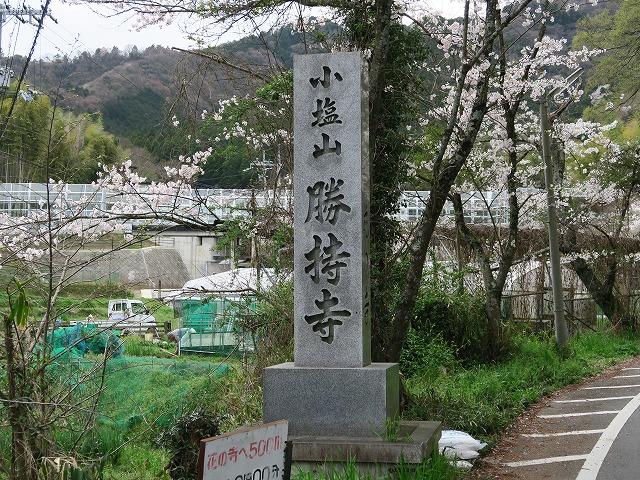 勝持寺 (1)