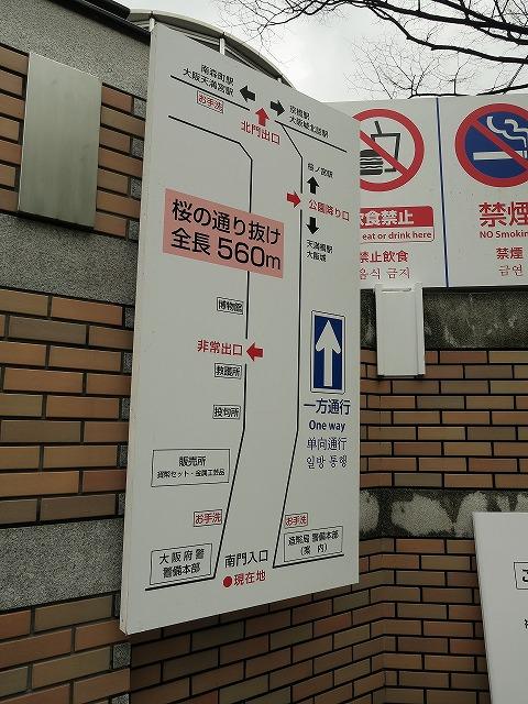 造幣局通り抜け (1)