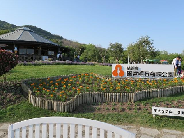 国営 明石海峡公園 (3)