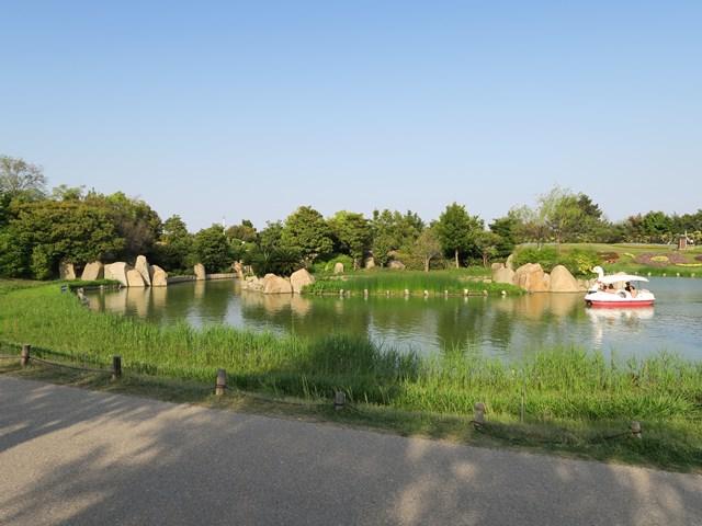 国営 明石海峡公園 (5)