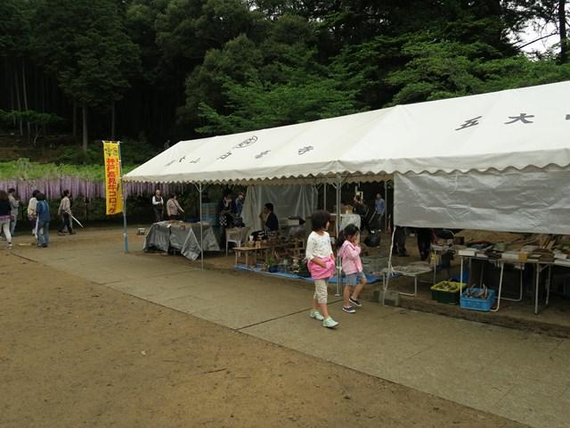 白毫寺(藤の花) (10)