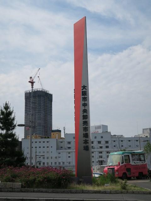 s-20150524 ざこばの朝市 (8)