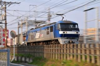貨物列車 EF210 桃太郎