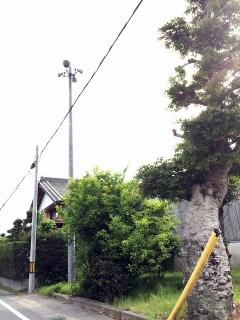 岡崎市下佐々木町の火の見櫓