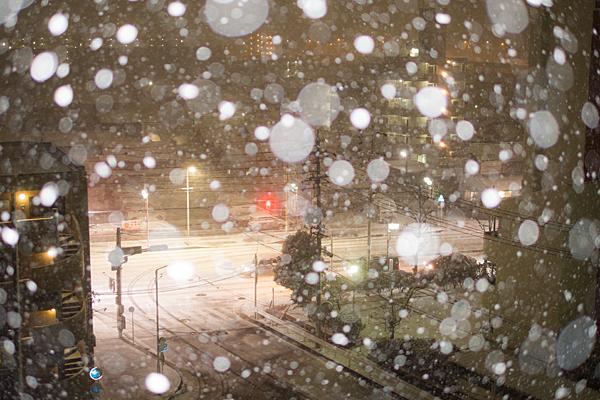 雪の日-2