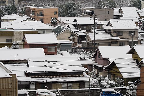 雪の日-3