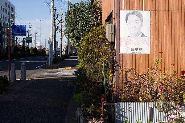 道ばた風景-6