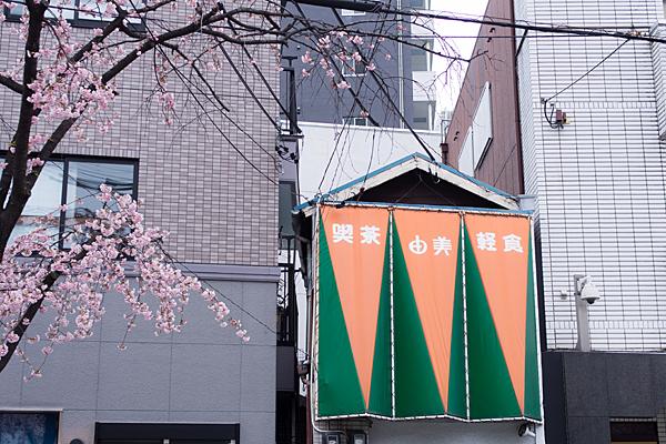 高岳桜2-10